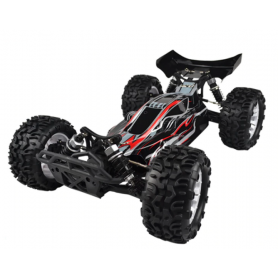 Coche RC Mega Buggy VRX BUGGSTER 1/10 70Km/h (Brushless)