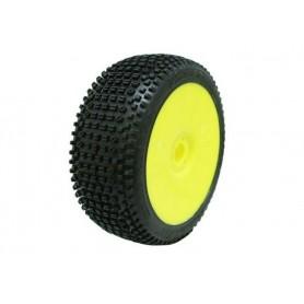 Kit 2 Neumáticos Road Runner Sport PROCIRCUIT para buggy 1/8